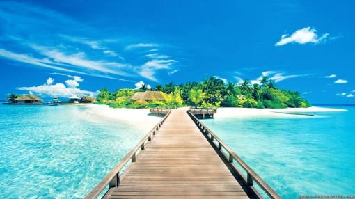 5c44b-paradise